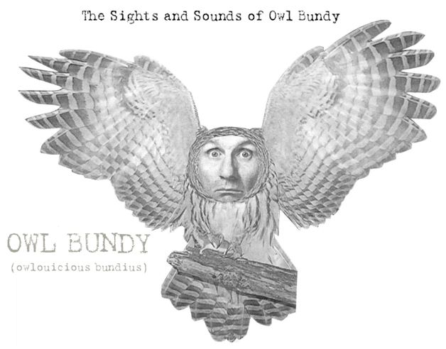 The Sights and Sounds of Owl Bundy