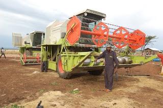 Ethiopian Harvester
