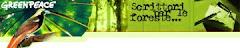Scrittori per le foreste