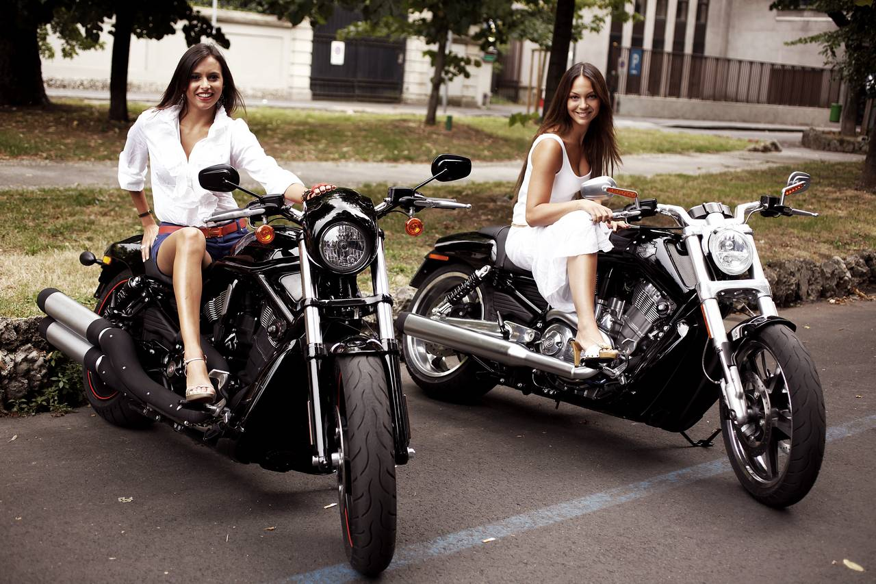 show me a bike: harley davidson girls