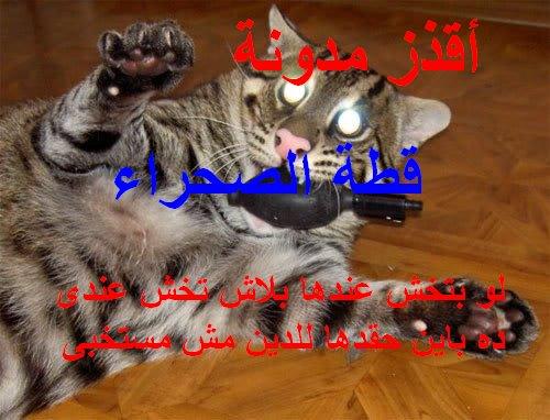 أقذر مدونة واى حد يتعامل معاها ميجيش عندى ودوس على الصورة هتلاقى ملف عنها وعن قذارتها