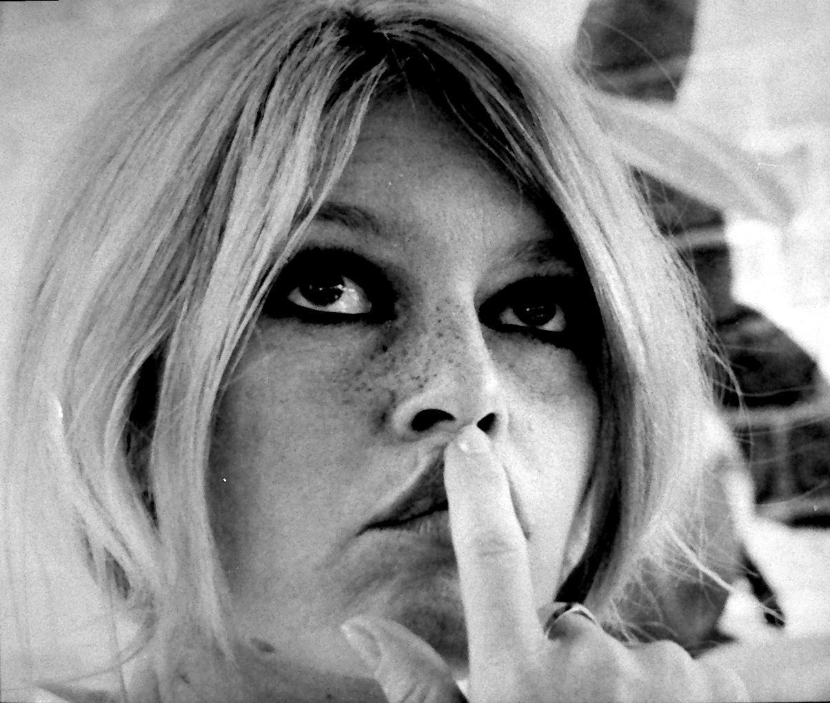 http://3.bp.blogspot.com/_e0pV4LmE4hc/TKM5lURImfI/AAAAAAAAAMw/HAUOlWYhxL8/s1600/Brigitte_Bardot.jpg