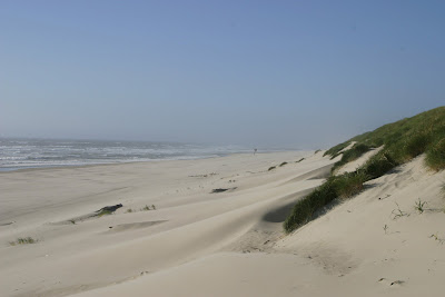 2008-07-08_52_US101_Oregon Dunes_OR_b.jpg