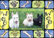 Rocky Creek Scotties