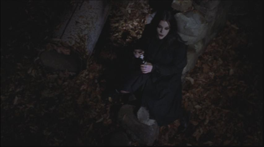 tower farm reviews book of shadows blair witch 2 2000. Black Bedroom Furniture Sets. Home Design Ideas