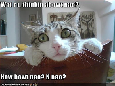 Cat peeking over a chair. The caption reads, Wat r u thinkin abowt nao? How bowt nao? N nao?