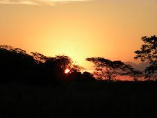 Esse Pantanal é Demais !!!