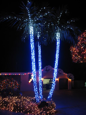 Christmas Outdoor Lights by Clot Family