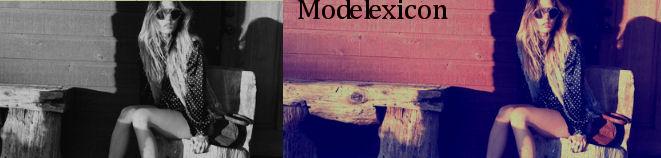Modelexicon