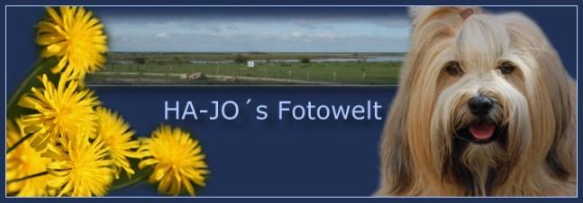 Ha-Jo´s Fotowelt
