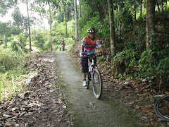 Concrete single track