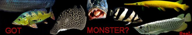 MONSTERFISHKEEPERS