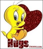 Hug tweety