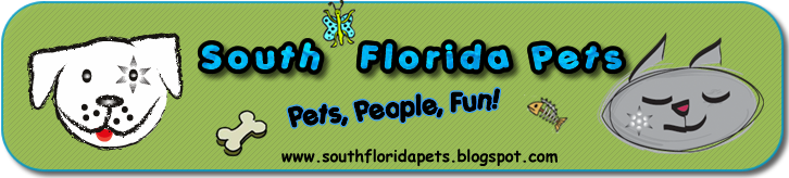 South Florida Pets