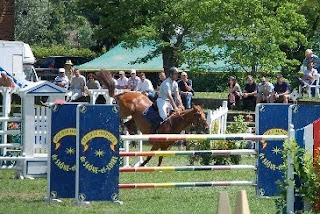 Cluny Show Jumping