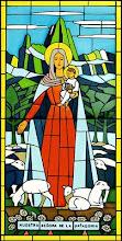 Nuestra Señora de la Patagonia