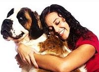 Ο σκύλος μπορεί να ζήσει στο διαμέρισμα; SKYLOS-DIAMERISMA