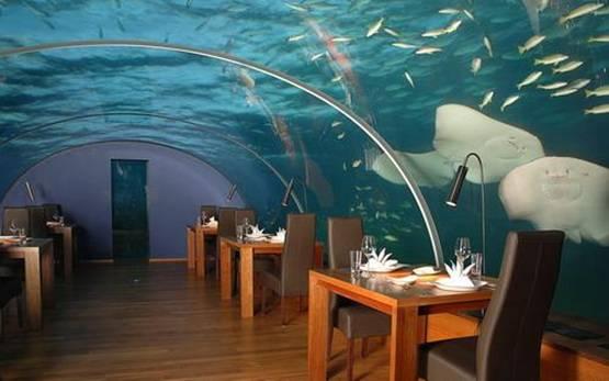 Cam Restaurant