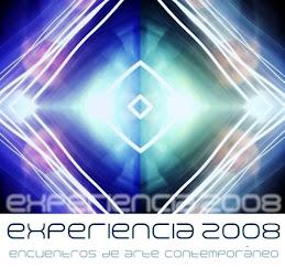 EXPERIENCIA 2008