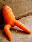 cenoura se abriu