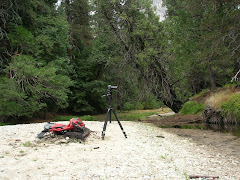 Creek Camera