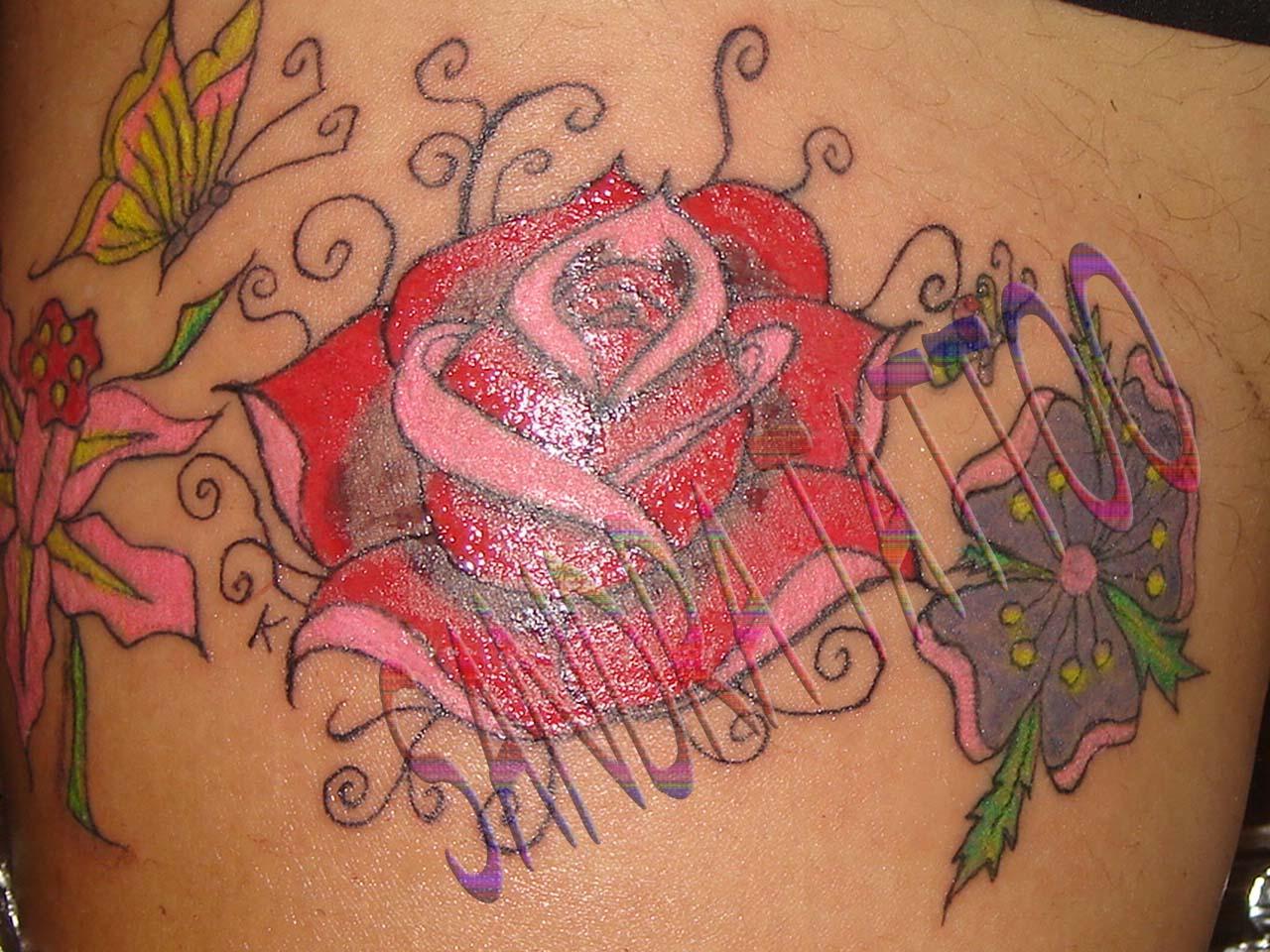 http://3.bp.blogspot.com/_eKky5Nj_fpc/TORZP8FFZHI/AAAAAAAAAB8/7O9WmwPxLFs/s1600/SANDRA.jpg