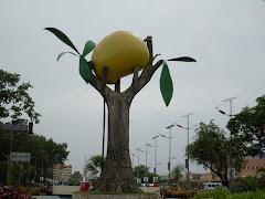"""Ruta Turística e Histórica """"El Mango"""""""