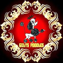 GULYS TOY POODLES