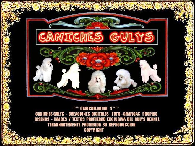 CANICHESGULYS-CANICHELANDIA-1-