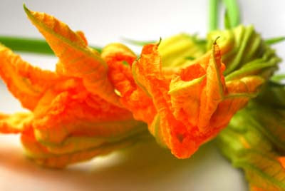 how to eat squash blossoms