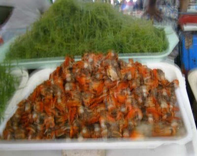 Sea foods in Cebu