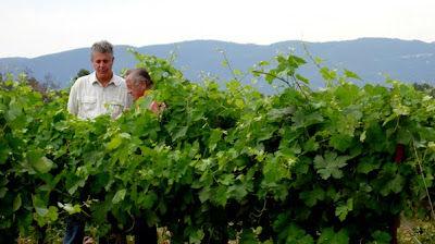 Anthony Bourdain: No Reservations - Provence - Tony on a tour of the Domaine de Val Joanis winery with owner Jean Chancel