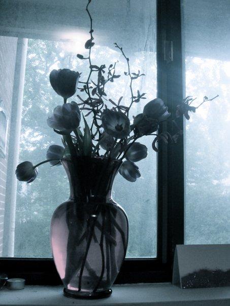 [desaturated+flowers+(sum)]