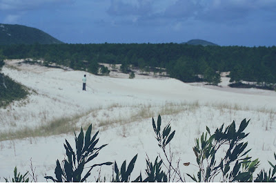 sitio+floripa+029 Reduto ecológico em risco em Florianópolis