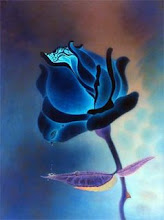A Blue Rose from Blue's Birthday Party