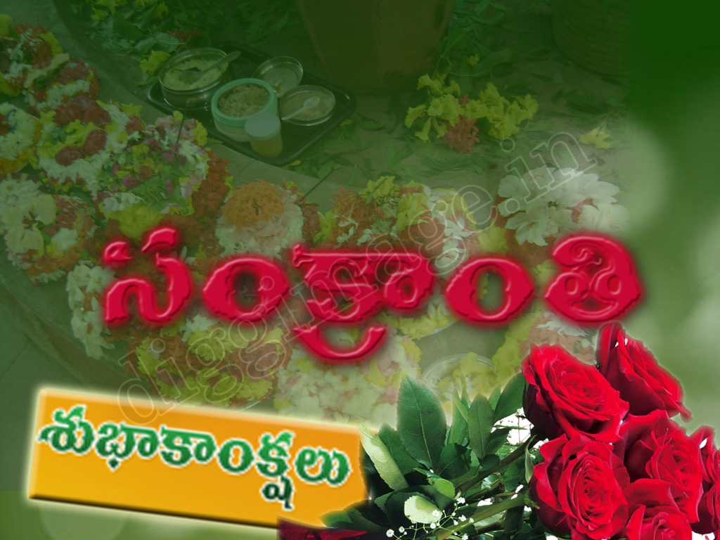 Sankranti wishing wallpapers greetings | Digg Image