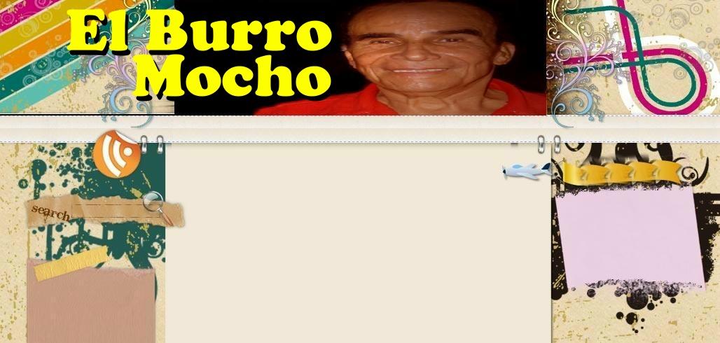 EL BURRO MOCHO