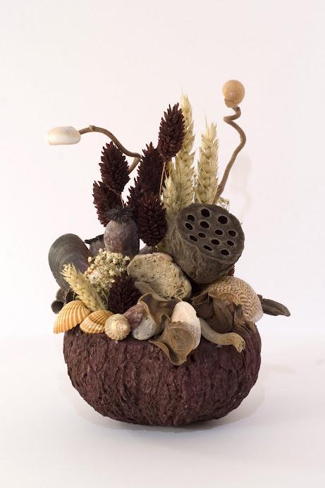 Acquarietto su cocco
