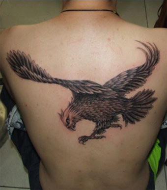 american bald eagle tattoos. Eagle Tattoos Gallery