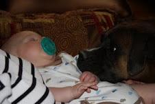 Abby LOVES Baby Duncan!