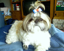 Patriotic Millie