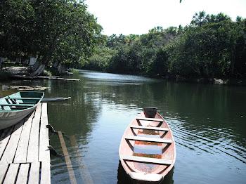 Rio Macacoari