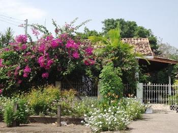 Casa no bairro do Laguinho