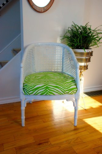 Green Zebra Stripe Cushion