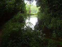 Trilha de Goiamunduba