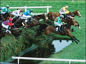 Aintree Ladies Day Racing