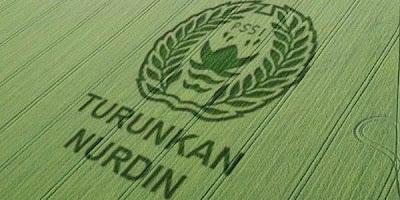 crop-circle-nurdin