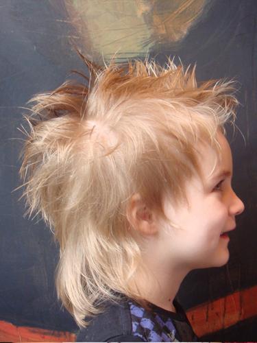 logiciel de coiffure virtuelle gratuit