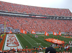 CLEMSON FIGHTING TIGERS