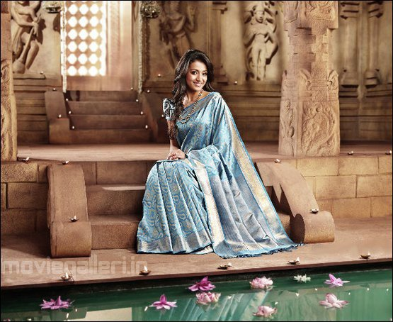 trisha in pothys advertisement photos